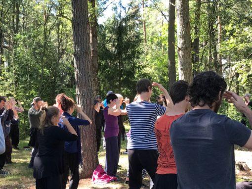 Nei Gong in the Forests of Sweden