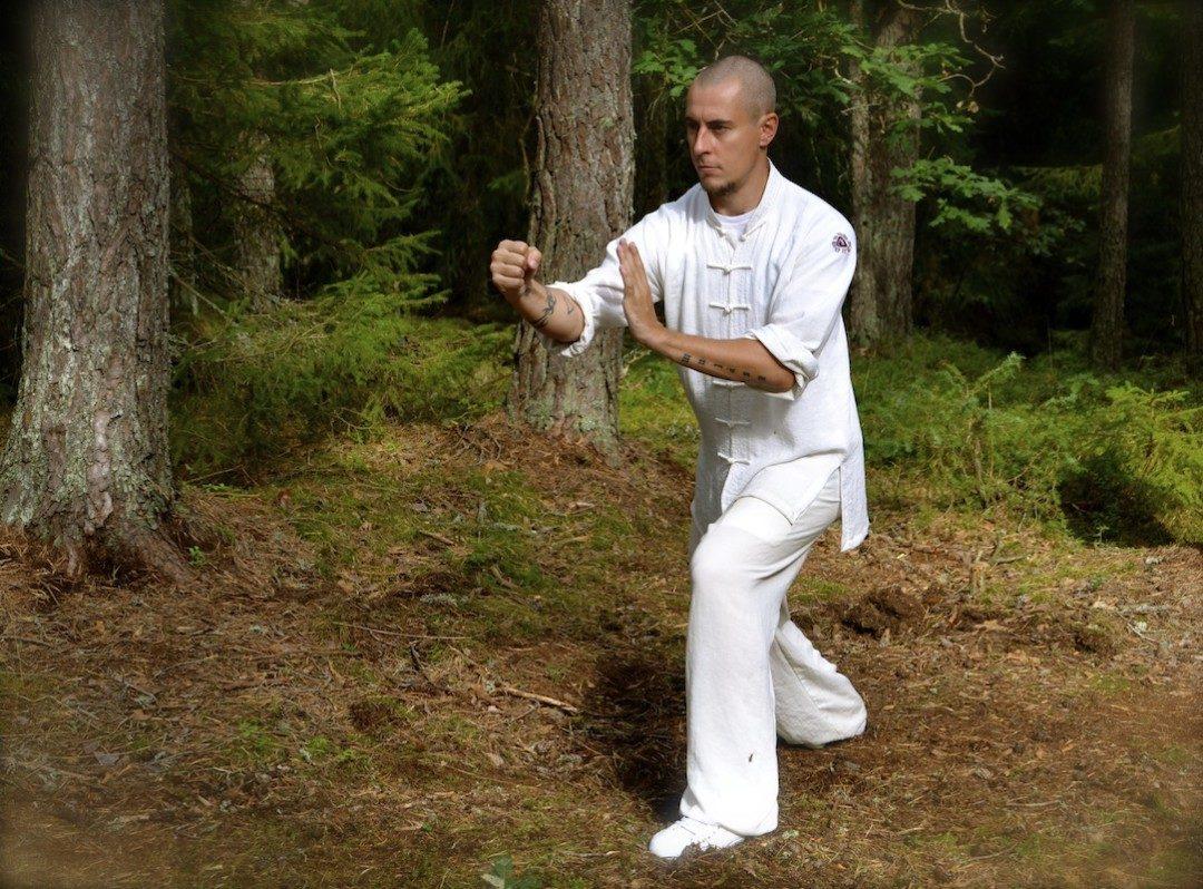 Yang Taijiquan Punching