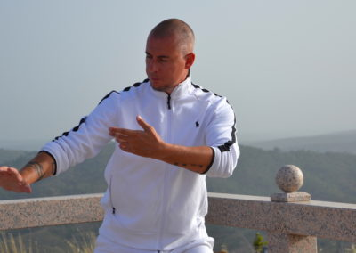 Cloud Hands Taijiquan